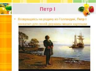 Петр I Возвращаясь на родину из Голландии, Петр І захватил для своей державы
