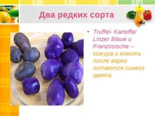 Два редких сорта Truffel- Kartoffel Linzer Blaue и Franzosische – кожура и мя