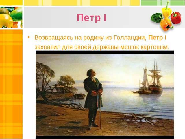 Петр I Возвращаясь на родину из Голландии, Петр І захватил для своей державы...