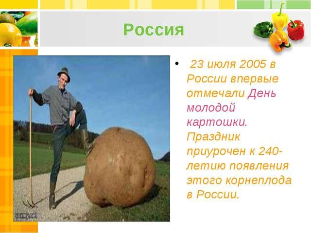 Россия 23 июля 2005 в России впервые отмечали День молодой картошки. Праздник...