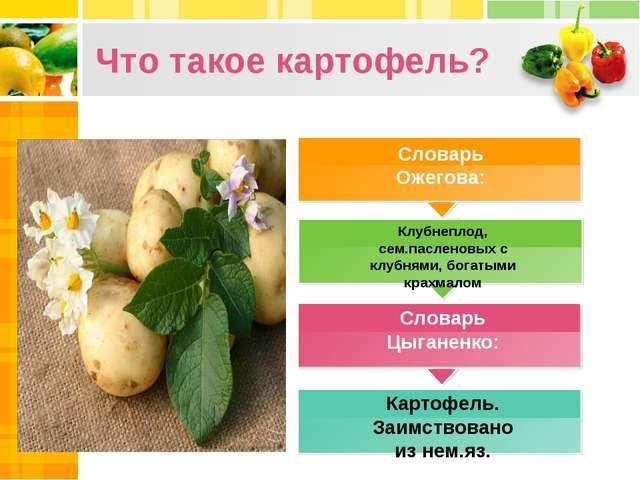 Что такое картофель? Словарь Ожегова: Клубнеплод, сем.пасленовых с клубнями,...