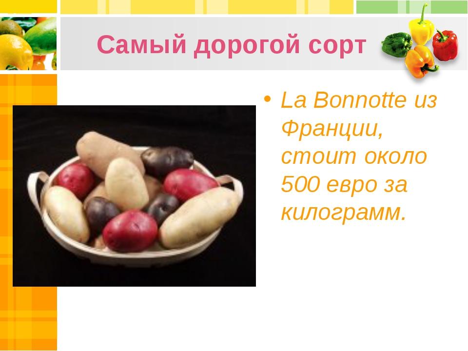 Самый дорогой сорт La Bonnotte из Франции, стоит около 500 евро за килограмм.