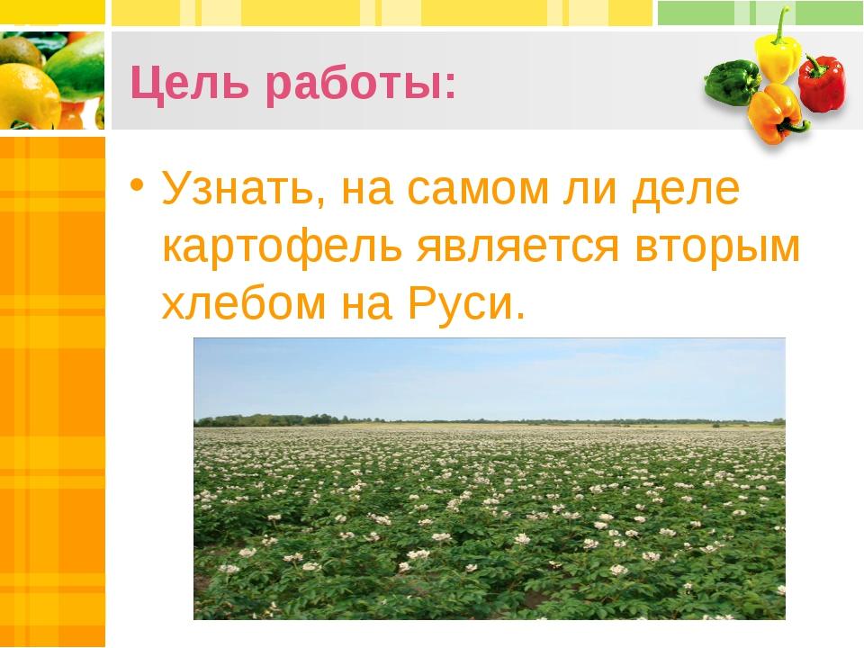 Цель работы: Узнать, на самом ли деле картофель является вторым хлебом на Руси.