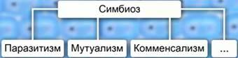 hello_html_m6b0125a.jpg