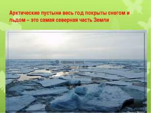 Арктические пустыни весь год покрыты снегом и льдом – это самая северная част