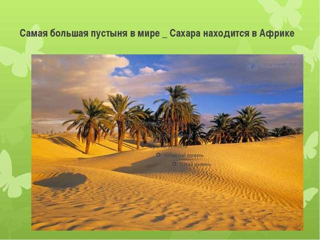Самая большая пустыня в мире _ Сахара находится в Африке