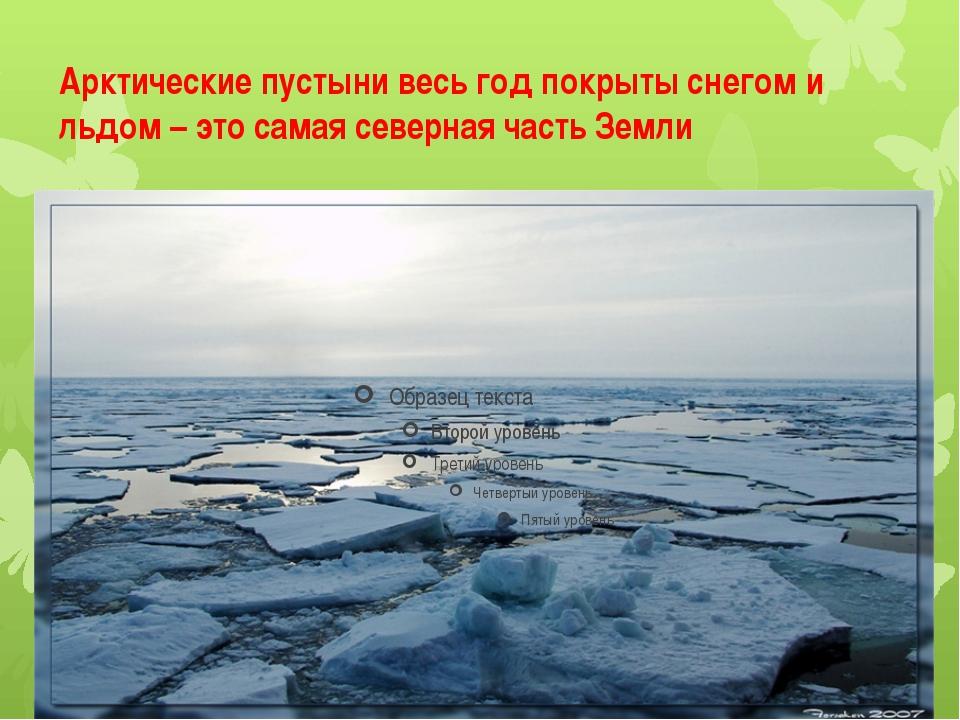 Арктические пустыни весь год покрыты снегом и льдом – это самая северная част...