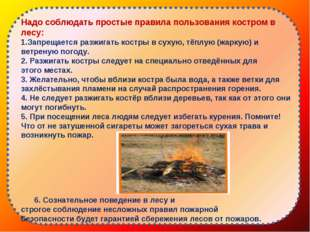 Надо соблюдать простые правила пользования костром в лесу: Запрещается разжи
