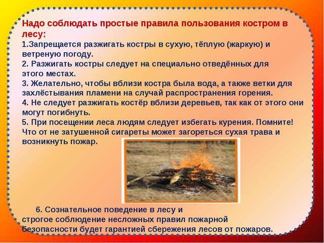 Надо соблюдать простые правила пользования костром в лесу: Запрещается разжи...