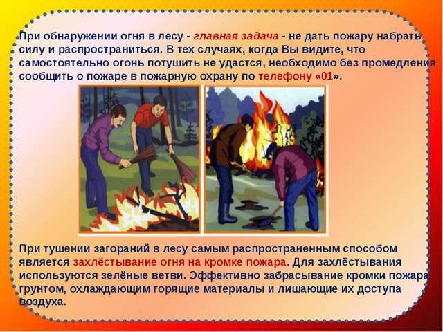 При обнаружении огня в лесу -главная задача- не дать пожару набрать силу и...