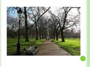 В 18 веке на территории современного Грин-парка постоянно обитали разбойники