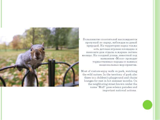 Большинство посетителей наслаждаются прогулкой по парку, наблюдая за дикой п...