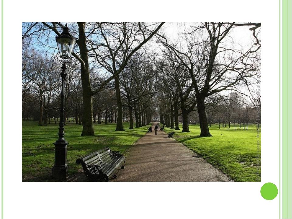 В 18 веке на территории современного Грин-парка постоянно обитали разбойники...