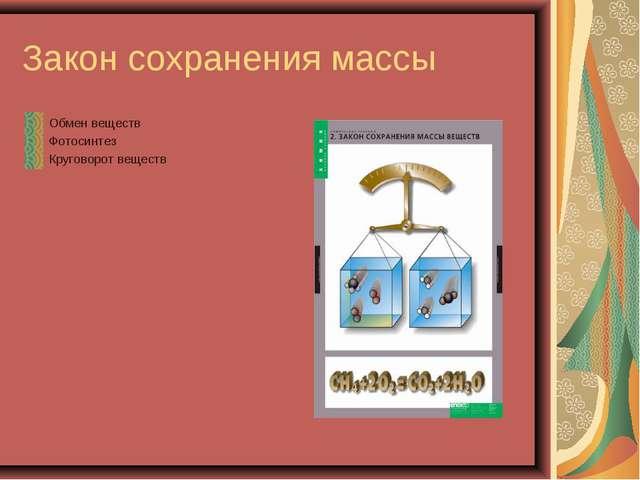 Закон сохранения массы Обмен веществ Фотосинтез Круговорот веществ