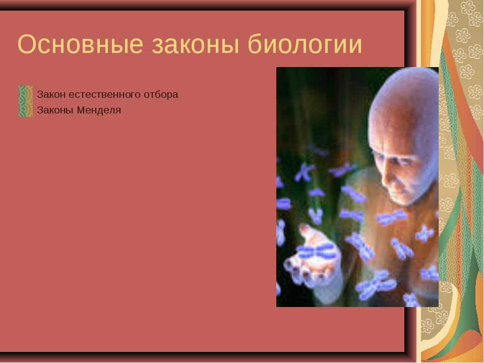 Основные законы биологии Закон естественного отбора Законы Менделя