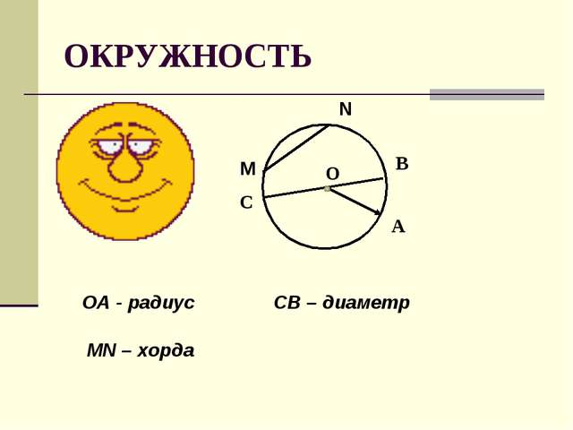 ОКРУЖНОСТЬ О В А С М N MN – хорда CВ – диаметр ОА - радиус