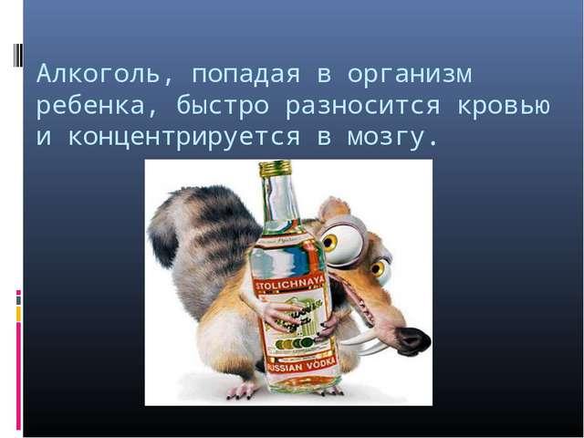 Алкоголь, попадая в организм ребенка, быстро разносится кровью и концентрируе...