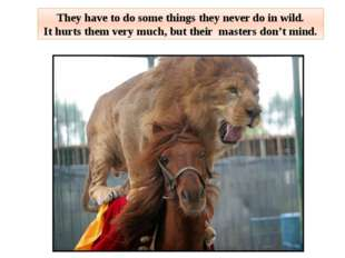 They have to do some things they never do in wild. It hurts them very much, b