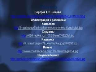 Портрет А.П. Чехова http://cs4949.vkontakte.ru/u2008214/134202625/z_a11126c7.