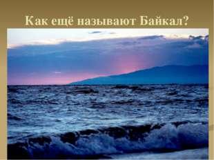 Как ещё называют Байкал? . .