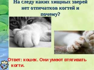 На следу каких хищных зверей нет отпечатков когтей и почему? Ответ: кошек. Он
