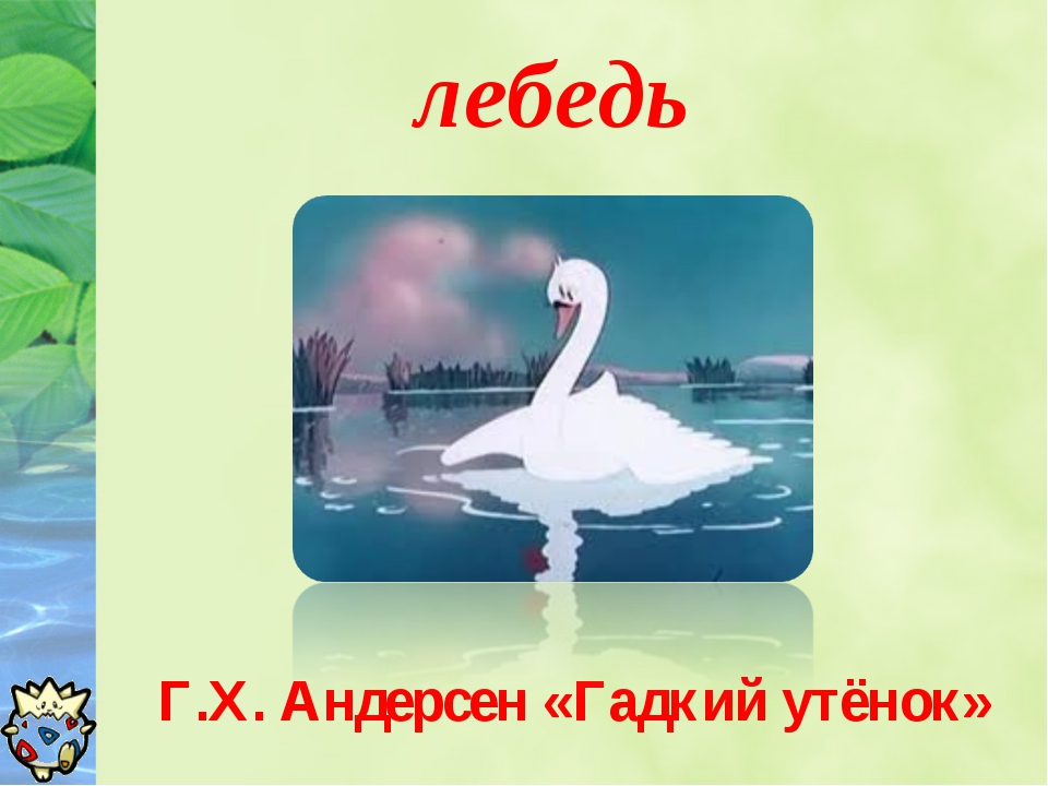 лебедь Г.Х. Андерсен «Гадкий утёнок»