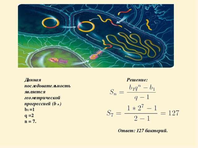 Данная последовательность является геометрической прогрессией (b n ) b1 =1 q...