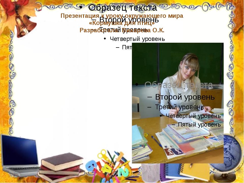 Презентация к уроку окружающего мира «Кормушка для птиц» Разработала: Вихарев...