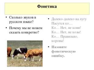 Фонетика Далеко-далеко на лугу Пасутся ко… Ко… Нет, не кони! Ко… Нет, не козы