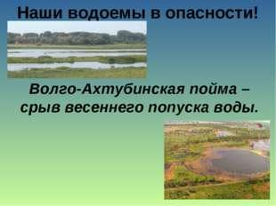 Наши водоемы в опасности! Волго-Ахтубинская пойма – срыв весеннего попуска во