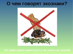 О чем говорят экознаки? Не лови диких животных и не уноси их домой!