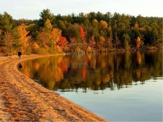Что и кто губит природу Волгоградской области? «Счастье – быть с природой, ви...