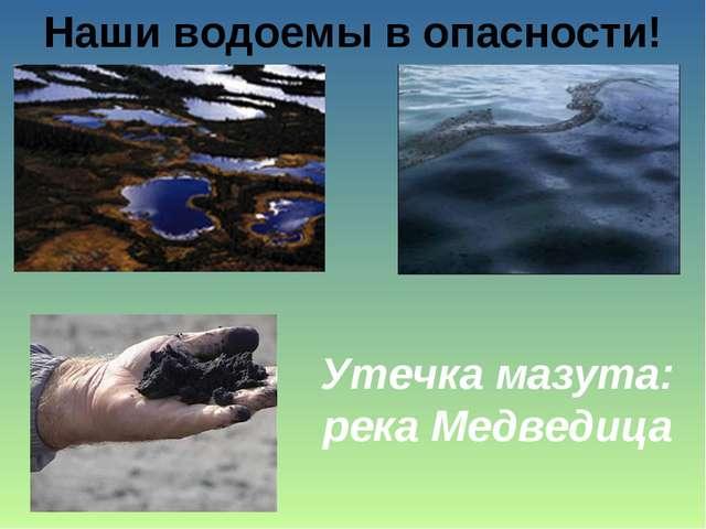 Наши водоемы в опасности! Утечка мазута: река Медведица