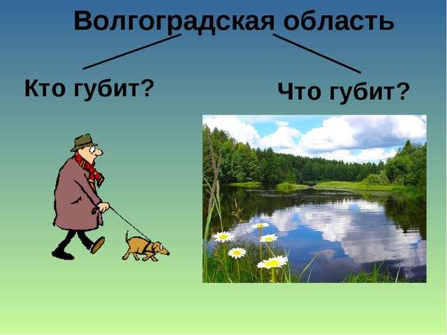 Волгоградская область Кто губит? Что губит?