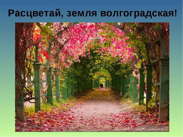 Расцветай, земля волгоградская!