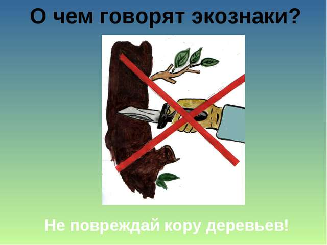 О чем говорят экознаки? Не повреждай кору деревьев!