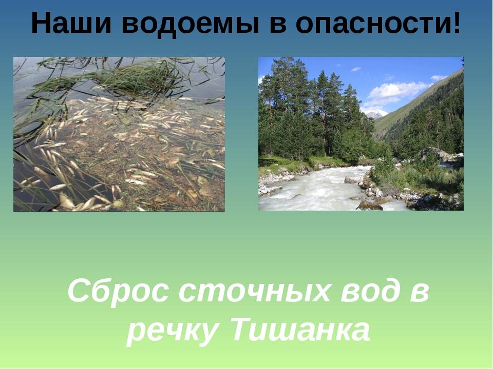 Наши водоемы в опасности! Сброс сточных вод в речку Тишанка