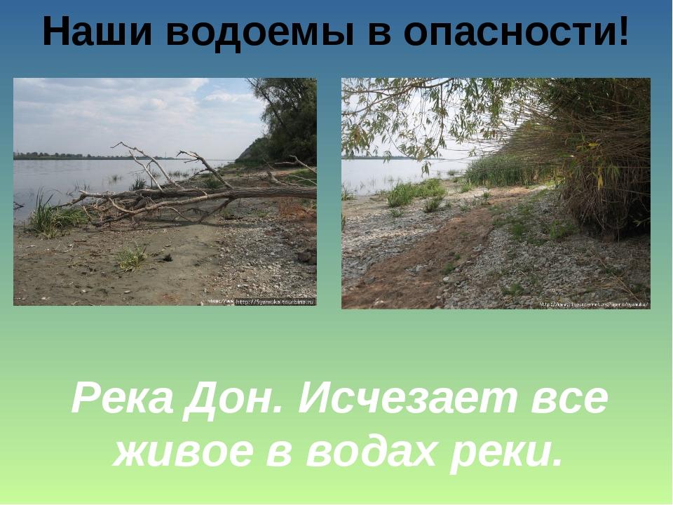 Наши водоемы в опасности! Река Дон. Исчезает все живое в водах реки.