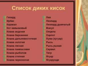 Список диких кисок Гепард Ирбис Каракал Кот камышовый Кошка андская Кошка ба