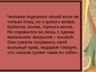 Человек подчинил своей воле не только птиц, но и дикого вепря, буйвола, волк
