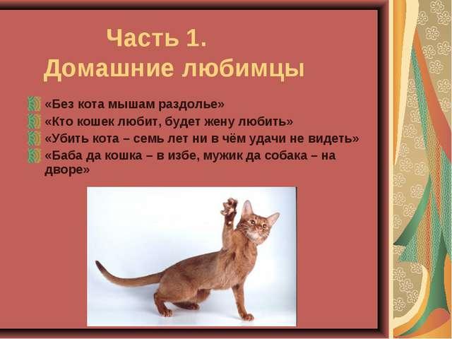 Часть 1. Домашние любимцы «Без кота мышам раздолье» «Кто кошек любит, будет...