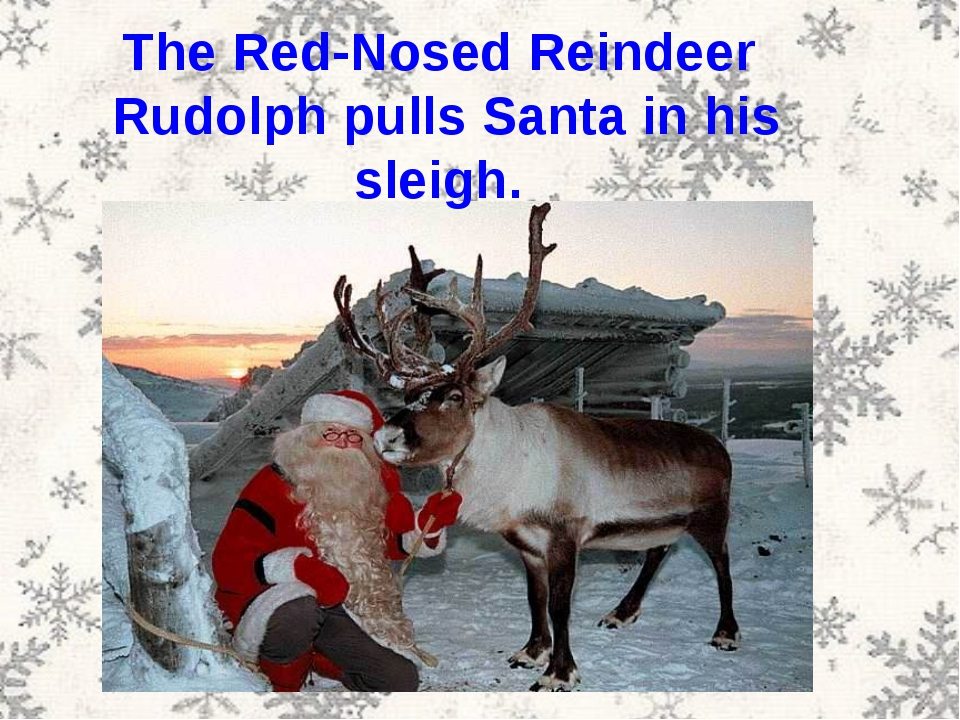 The Red-Nosed Reindeer Rudolph pulls Santa in his sleigh.