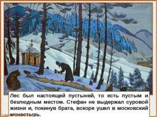 Лес был настоящей пустыней, то есть пустым и безлюдным местом. Стефан не выде