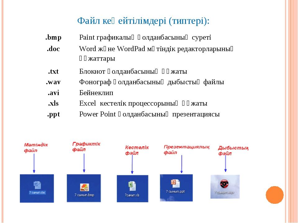 Файл кеңейтілімдері (типтері):  .bmpPaint графикалық қолданбасының суреті ....