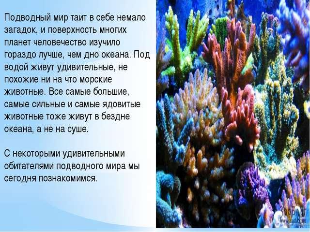 Подводный мир таит в себе немало загадок, и поверхность многих планет человеч...
