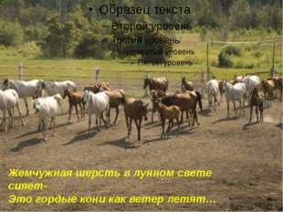 Жемчужная шерсть в лунном свете сияет- Это гордые кони как ветер летят…