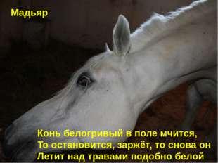 Конь белогривый в поле мчится, То остановится, заржёт, то снова он Летит над