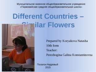 Different Countries – Similar Flowers Муниципальное казенное общеобразователь
