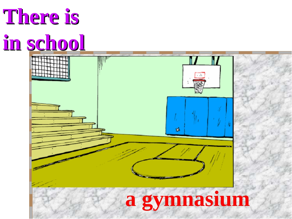 There is in school a gymnasium
