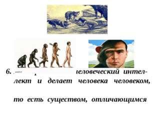 6. Язык развивает человеческий интел- лект и делает человека человеком, то ес